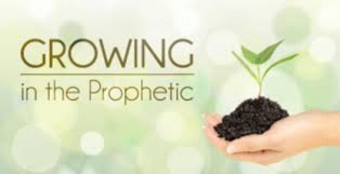 Blitz: Growing In The Prophetic